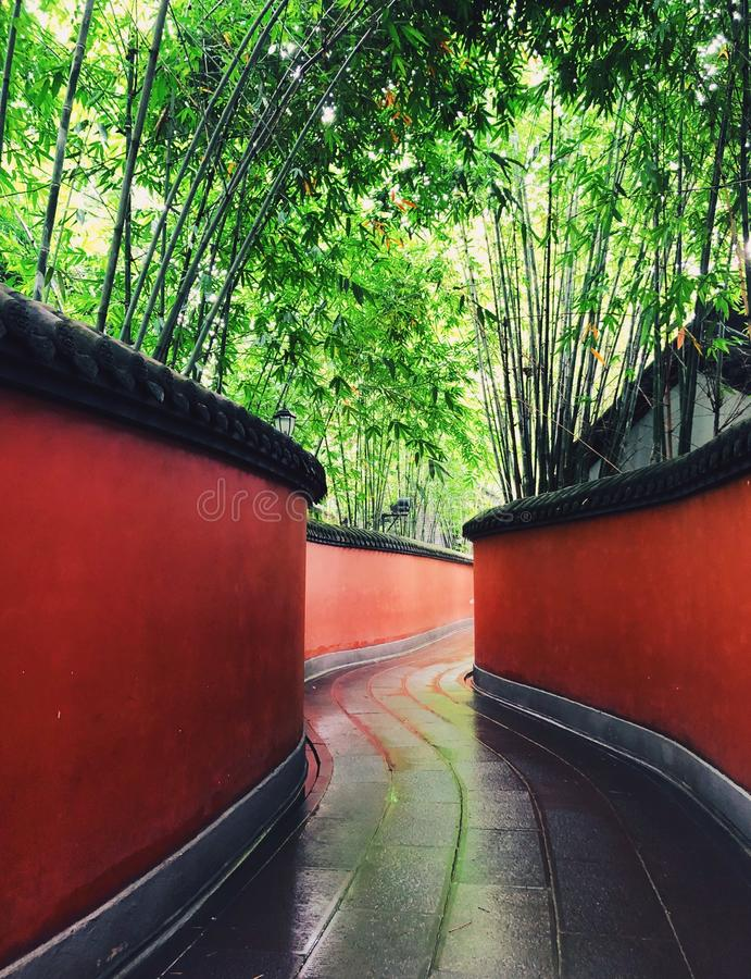 Red wall surrounded by bamboo forest. A piece of bamboo forest with red wall surrounded in Chengdu Wuhou Shrine, Sichuan province, China stock image
