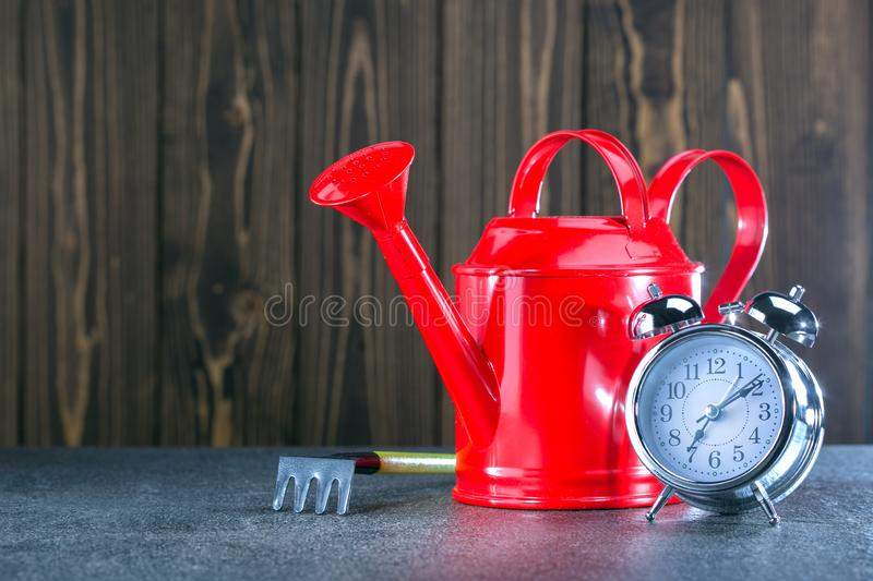 Red watering can with garden tool and clock on wooden background. stock image