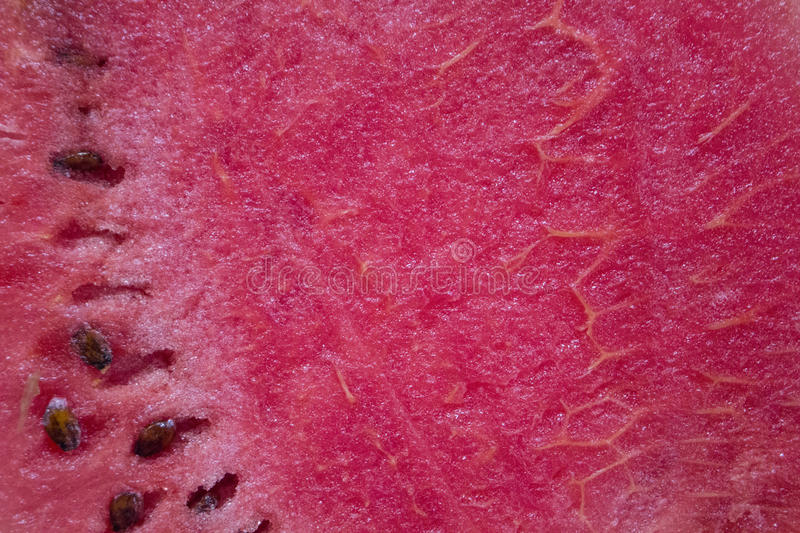 Red watermelon cut with black seeds. Ripe fruit with green skin. royalty free stock photo