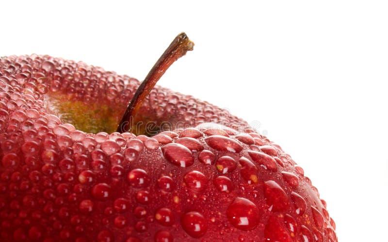 Red wet apple. stock photo