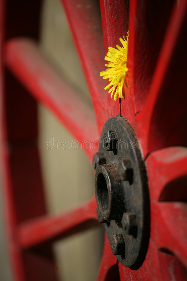 Red wheel stock image