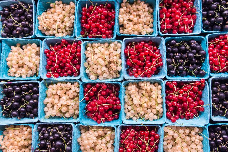 Currants from above in farmers market stock image