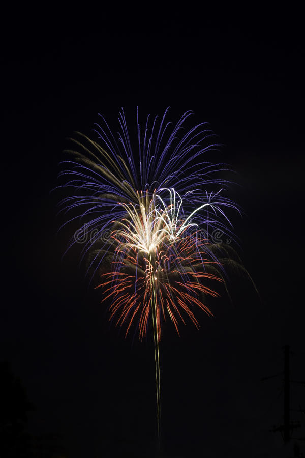 Red, white and blue fireworks against a black sky stock images