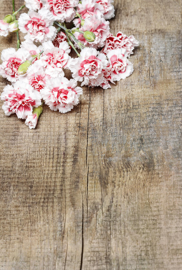 Download Red And White Carnations On Wooden Table Stock Photo - Image of plant, anniversary: 39510676
