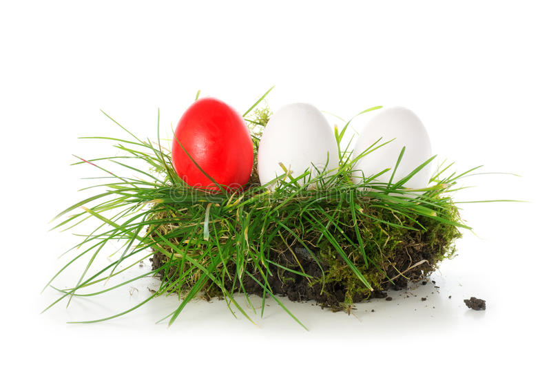 Red and white eggs in a piece of turf, easter decoration isolate. D on white background royalty free stock photos