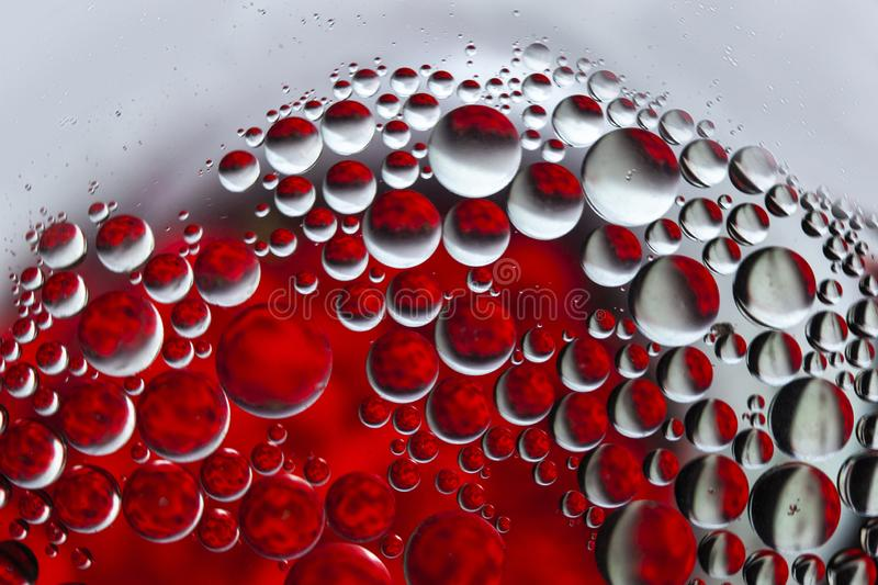 Oil bubbles macro colourful background. Red and white Oil droplets round shape pattern smooth background vector illustration