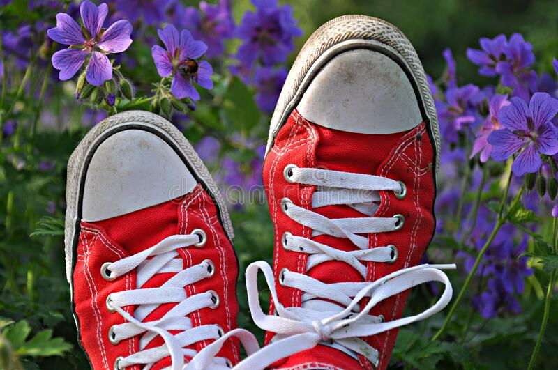 Red and white trainers stock image
