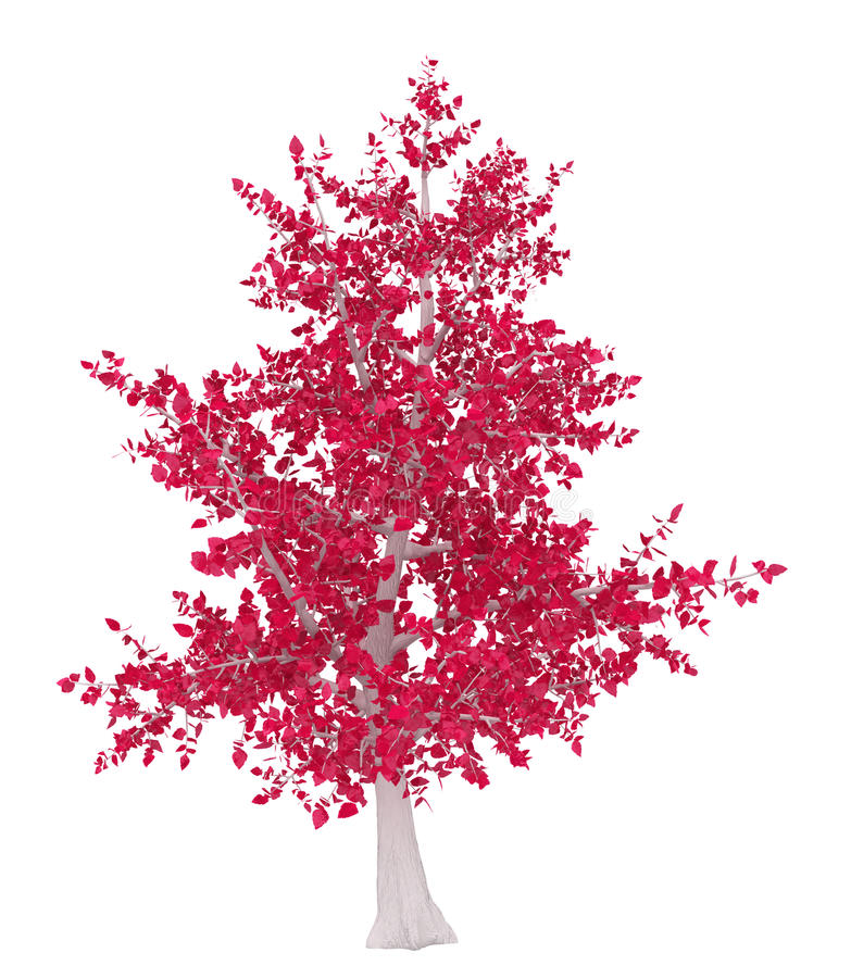 Download Red and White Tree stock illustration. Image of isolated - 15081397