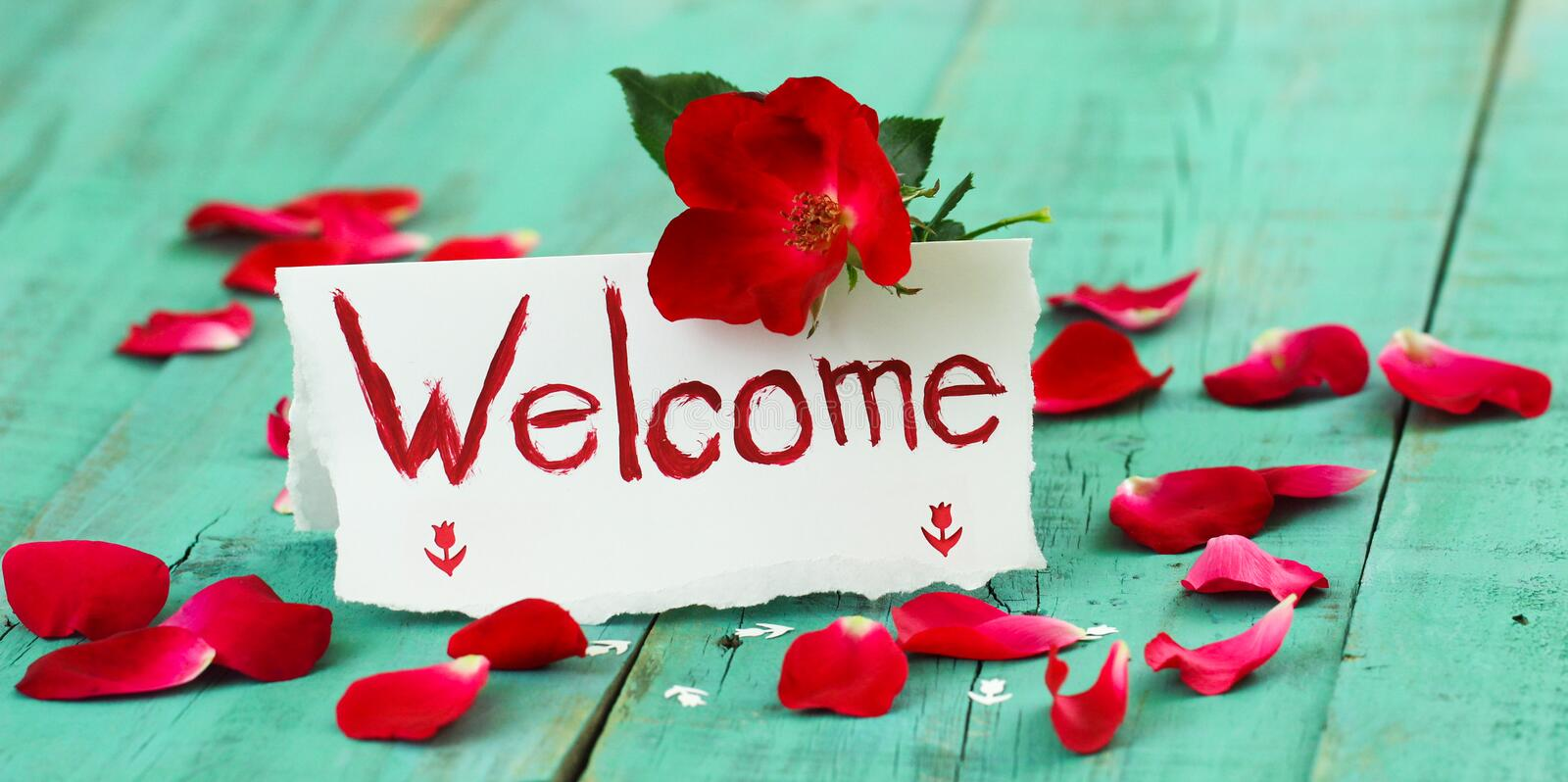Red and white welcome place card with red flower and rose petals on antique green rustic wood table stock photography