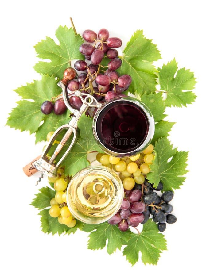 Red white wine glasses grape vine green leaves Autumn stock photography