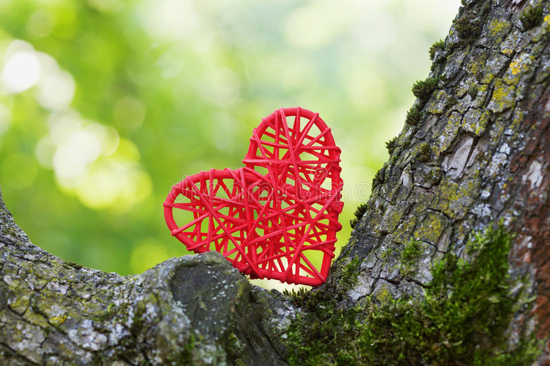 Red wicker heart between the tree trunks against the green bokeh background. Environmental protection and love of nature concept. royalty free stock photography