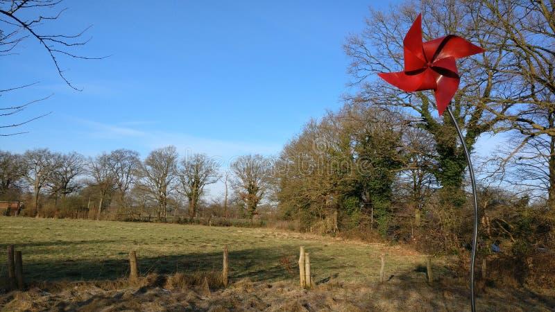 Red Windmill Postcard stock photo