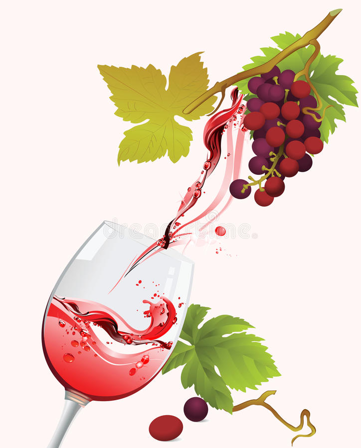 Download Red Wine. stock vector. Image of image, branch, bubbles - 13521447