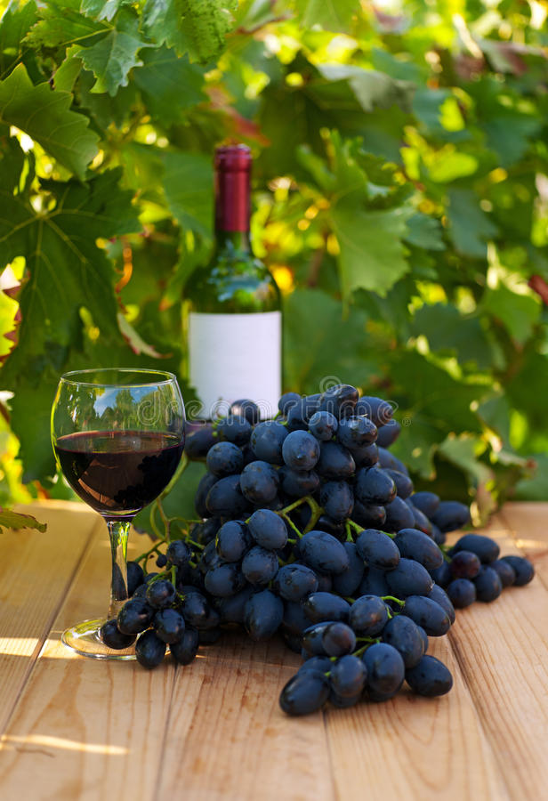 Download Red Wine Royalty Free Stock Photo - Image: 21356065