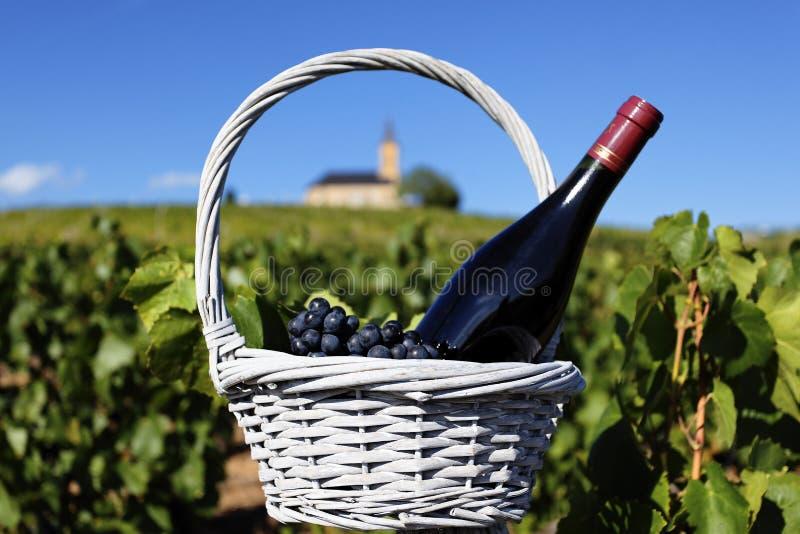 Download Red wine stock image. Image of beverage, green, harvest - 22277857