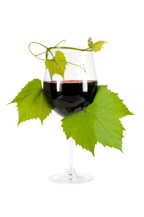 Download Red Wine Royalty Free Stock Photo - Image: 25026845