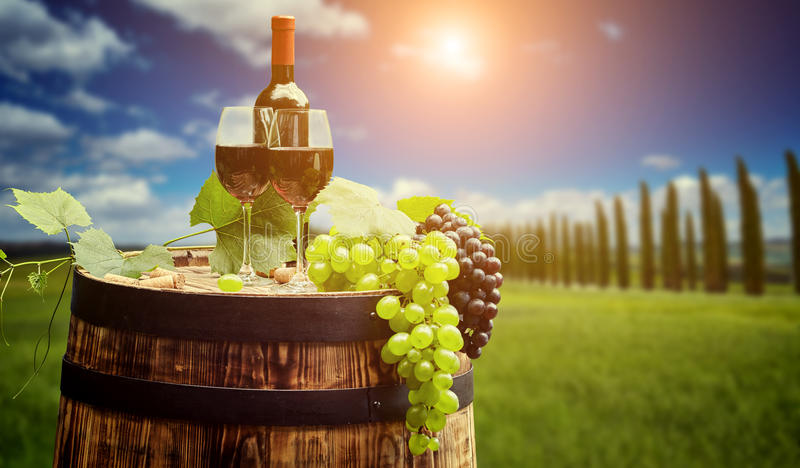 Red wine with barrel on vineyard in green Tuscany. Italy stock image