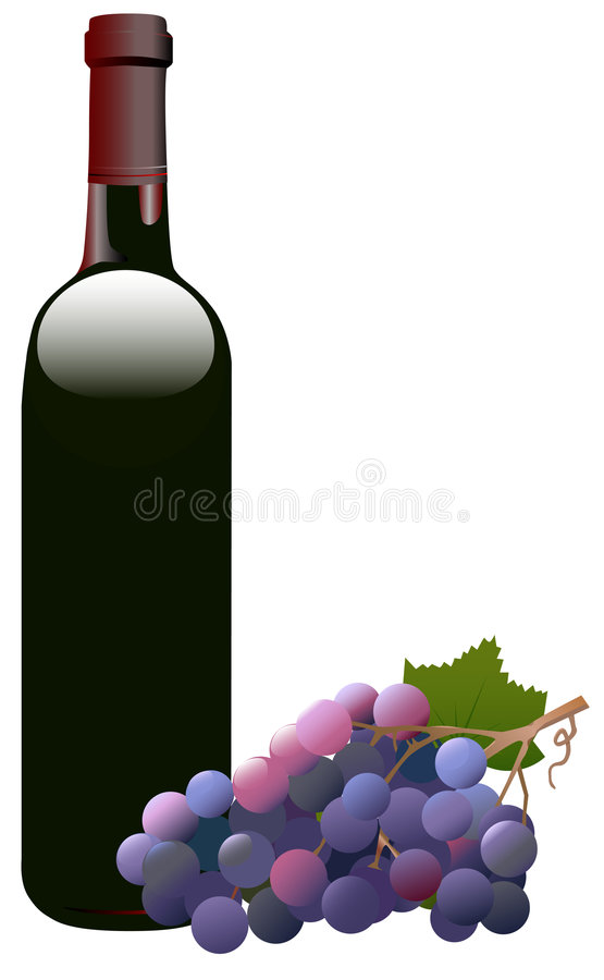 Red Wine Bottle & Grapes vector illustration