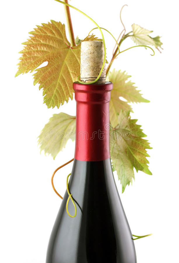 Red Wine Bottle royalty free stock photography