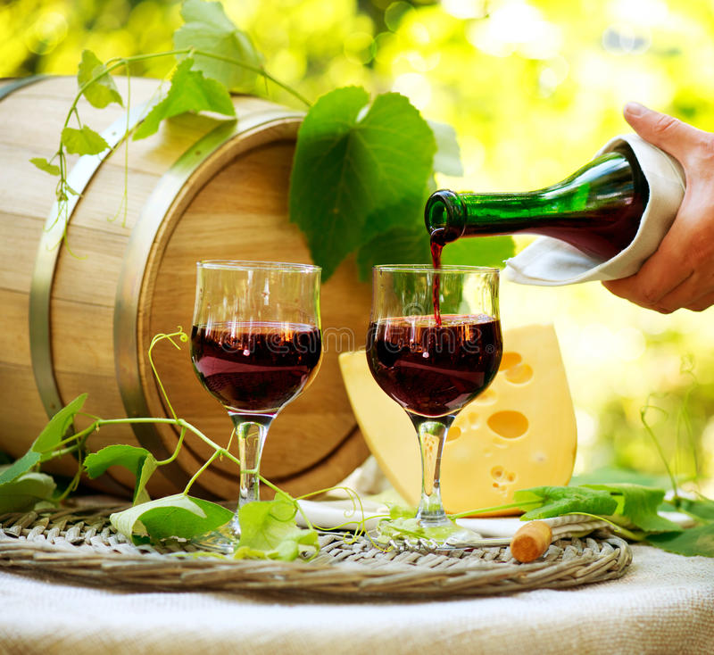 Download Red Wine and Cheese stock photo. Image of grapevine, design - 28763710