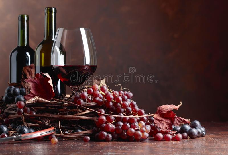 Red wine and fresh grapes with dried up vine leaves stock image