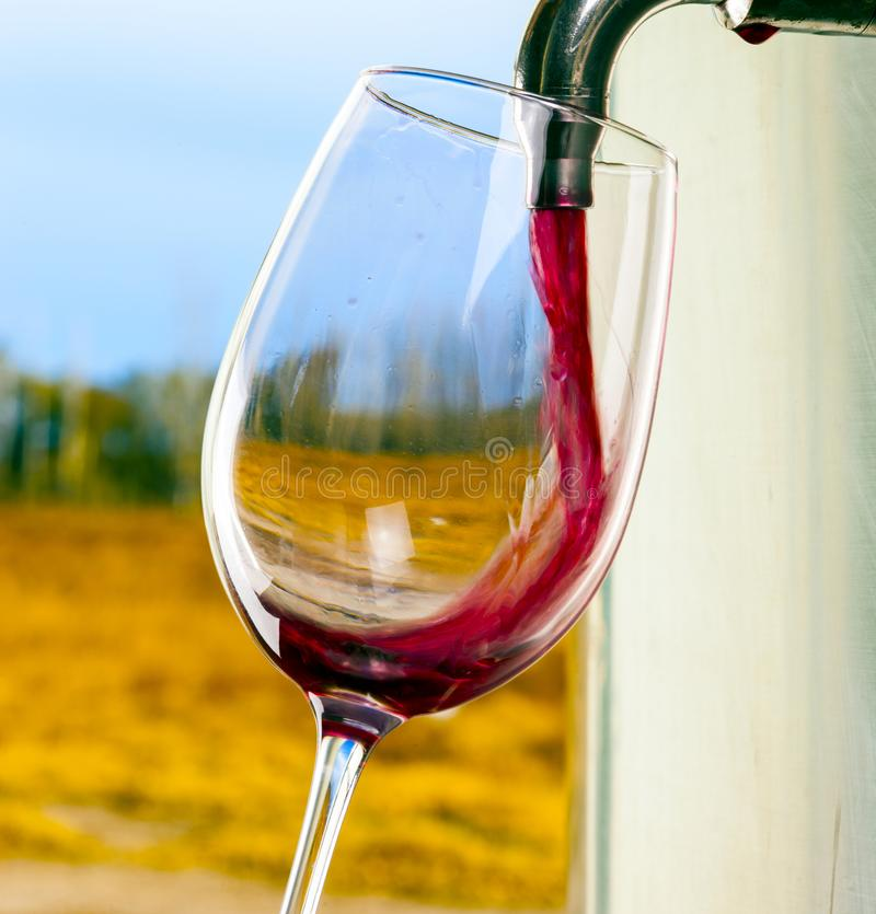 Red wine glass barrel stock images