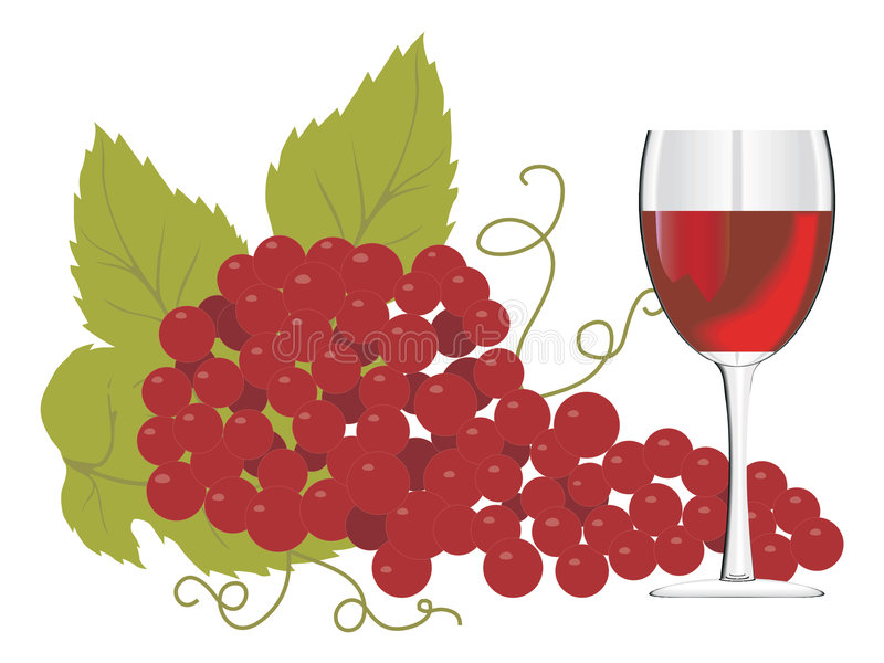 Red wine glass with a bunch of grapes stock illustration