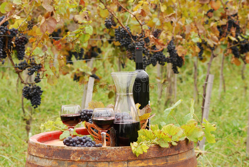 Red Wine And Grape Royalty Free Stock Photos