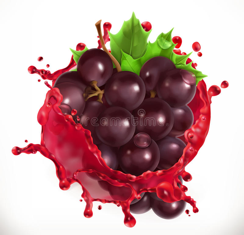 Red wine and grapes. Fresh fruit, vector icon royalty free illustration