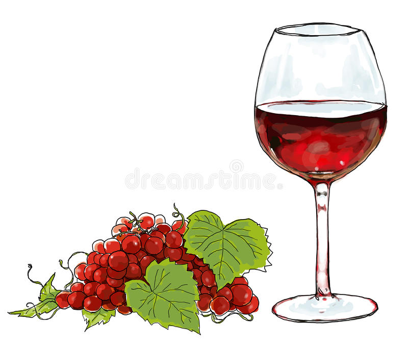 Red wine and vine. Beverage alcohol stock illustration