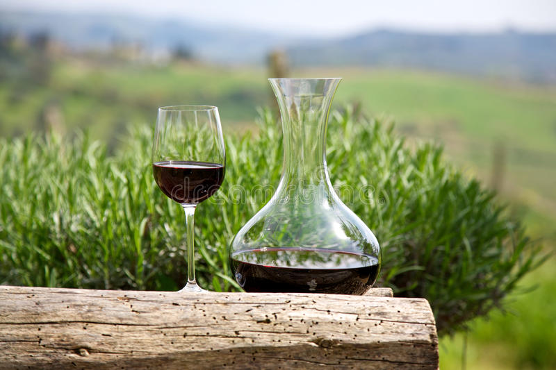Red wine in a wine carafe and a wine glass. In vineyard royalty free stock images