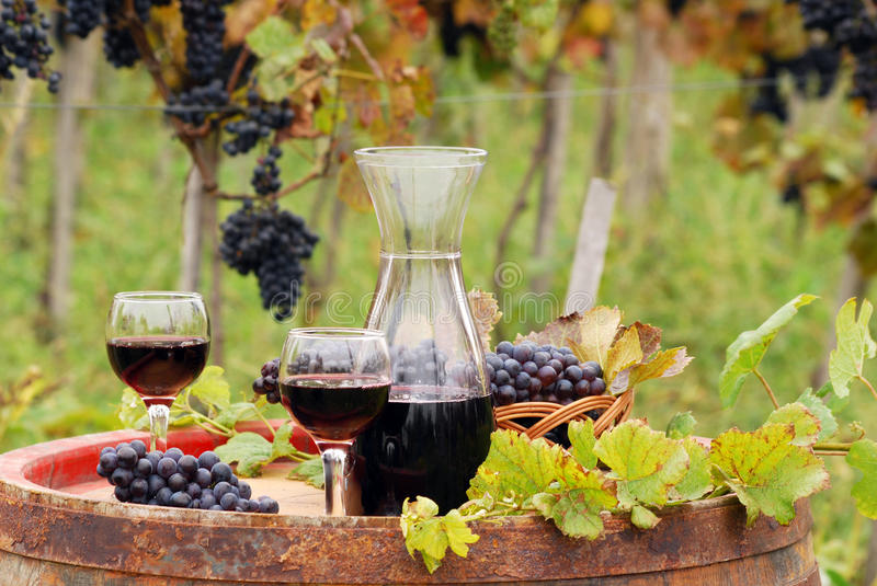 Red wine on wooden barrel. Autumn season royalty free stock photography