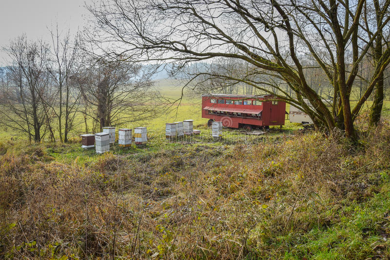 Red wooden bee hives stock photography