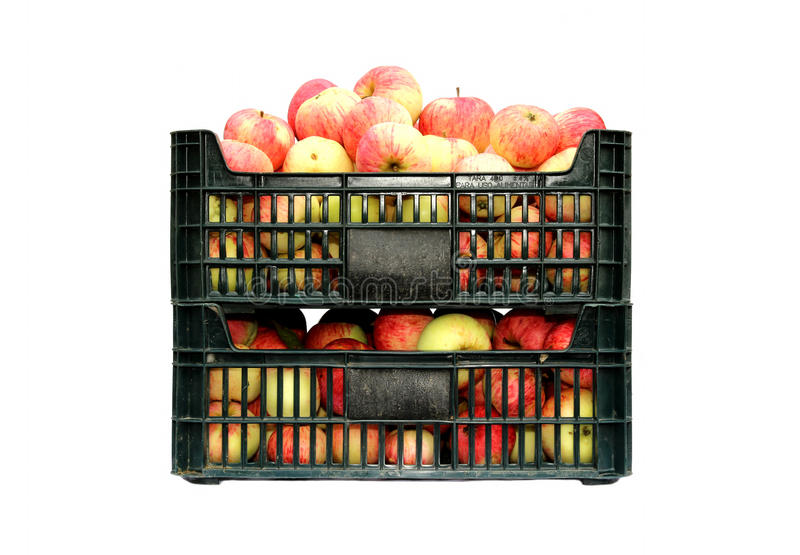 Red and yellow apples in two plastic boxes isolated stock images