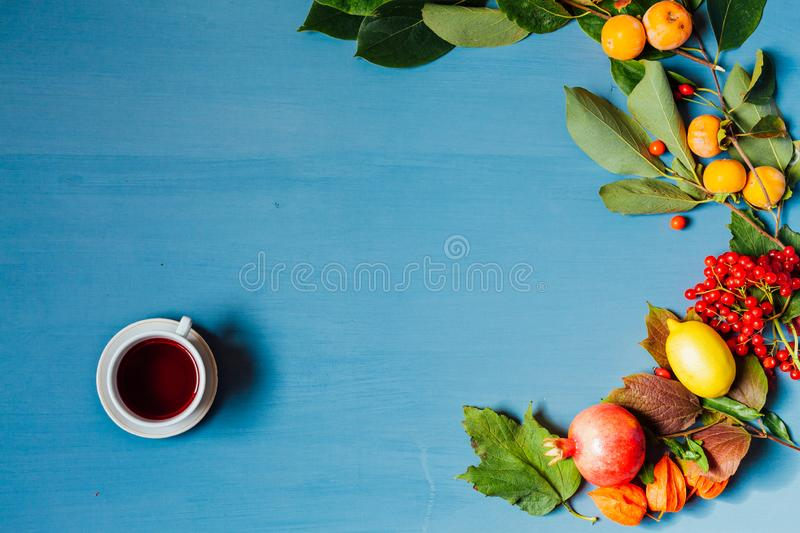 Red and yellow autumn leaves fruit nuts on a grey background. 1 stock photo