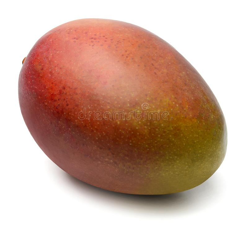 Red-yellow mango on white isolated background. Close-up. stock photography