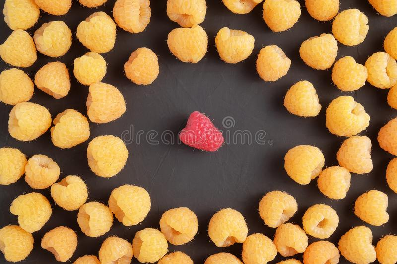 Red and yellow ripe natural fresh raspberries on dark background. Top view. royalty free stock photos