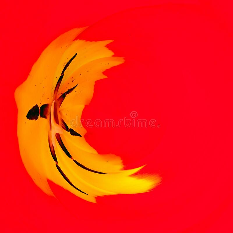 Red Yellow Shapes and Blurs Abstract Background royalty free stock image