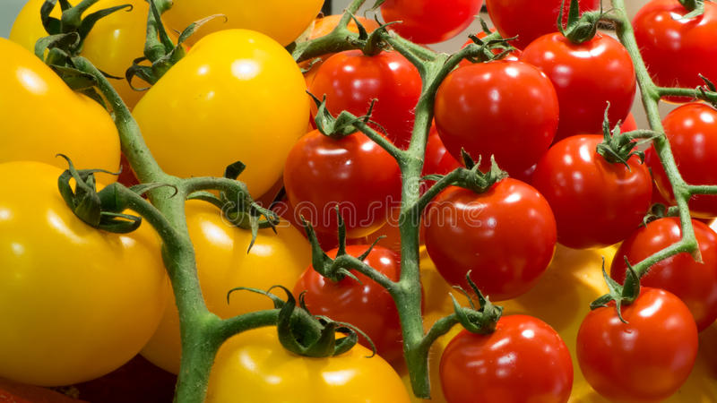 Red and yellow tomatoes stock photo