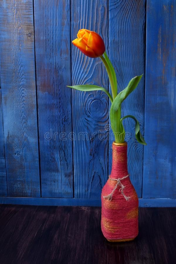 Red and yellow tulip in a pink bottle stock image