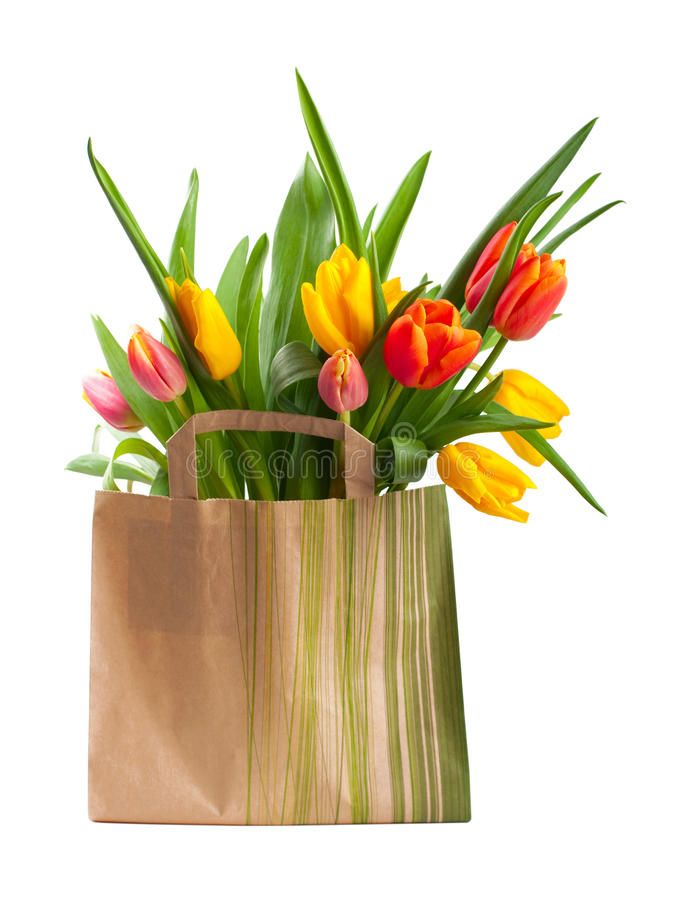 Red and yellow tulips royalty free stock photos