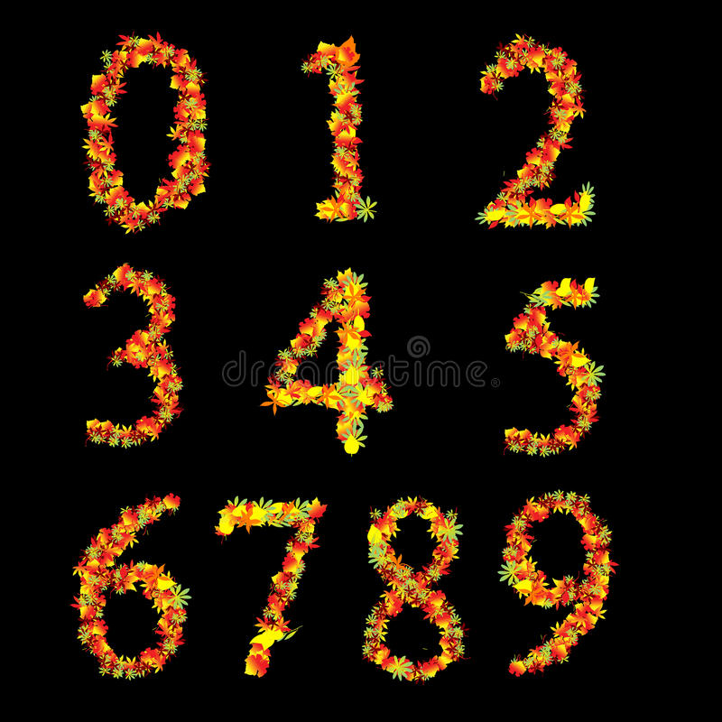 Red Yellow Vibrant  Leaves Font Numbers