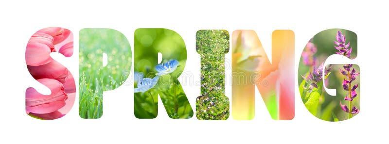 Redacte la primavera con las fotos coloridas de la naturaleza dentro de las letras stock de ilustración
