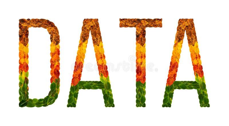 Redacte los datos escritos con el fondo aislado blanco de las hojas, bandera para imprimir, ejemplo creativo de hojas coloreadas ilustración del vector