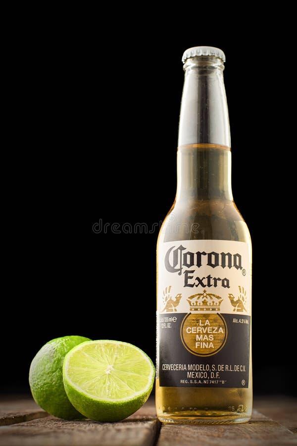 Redakcyjna fotografia korony słonecznej piwo z wapnem na drewnianym stole odizolowywającym na czerni kosmos kopii obrazy stock