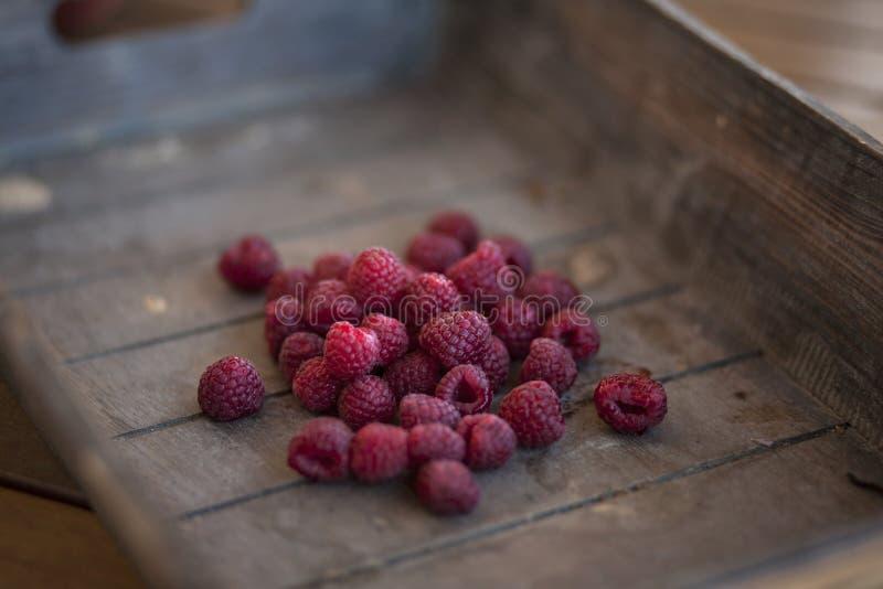 Redberries arkivbilder