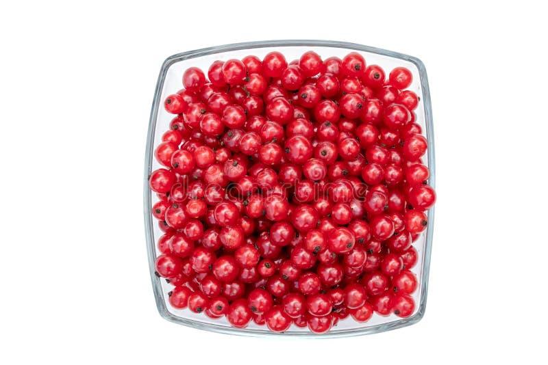 Redcurrants στο κύπελλο γυαλιού που απομονώνεται στο άσπρο υπόβαθρο στοκ φωτογραφίες