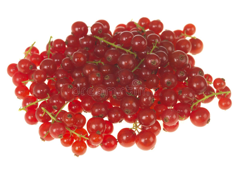 Download Redcurrants foto de stock. Imagem de redcurrants, branco - 26501230