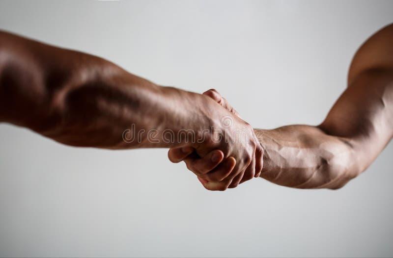 Redding, die gebaar of handen helpen Sterke greep Twee handen, die hand van een vriend helpen Handdruk, wapens, vriendschap royalty-vrije stock afbeelding
