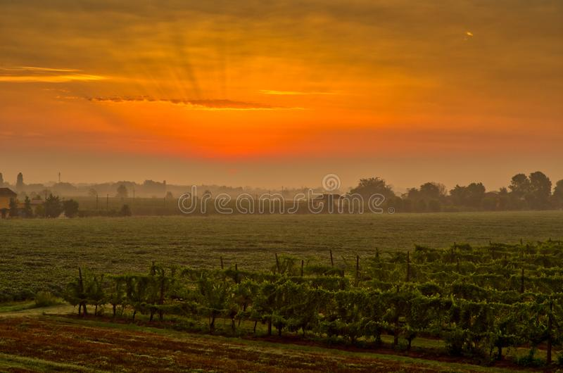 Sunrise on countryside royalty free stock photos